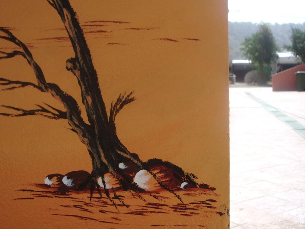 [Maroc/Commerces]  Peinture de motif sur camping car  Maroc-10