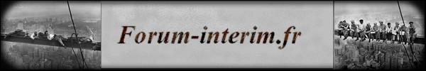 Appel à contribution : le logo de FI-FR ! Bannie13