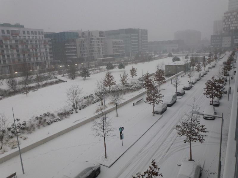 Le quartier sous la neige P1020210
