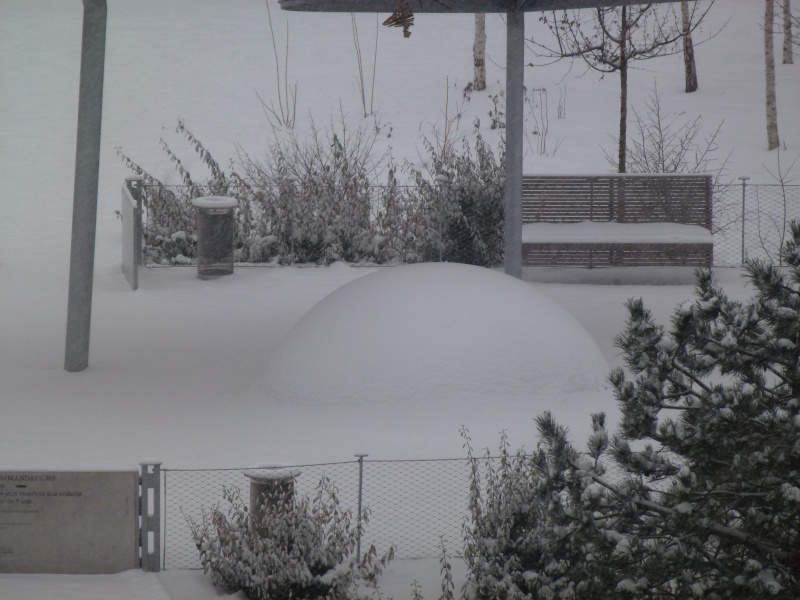 Le quartier sous la neige P1020211