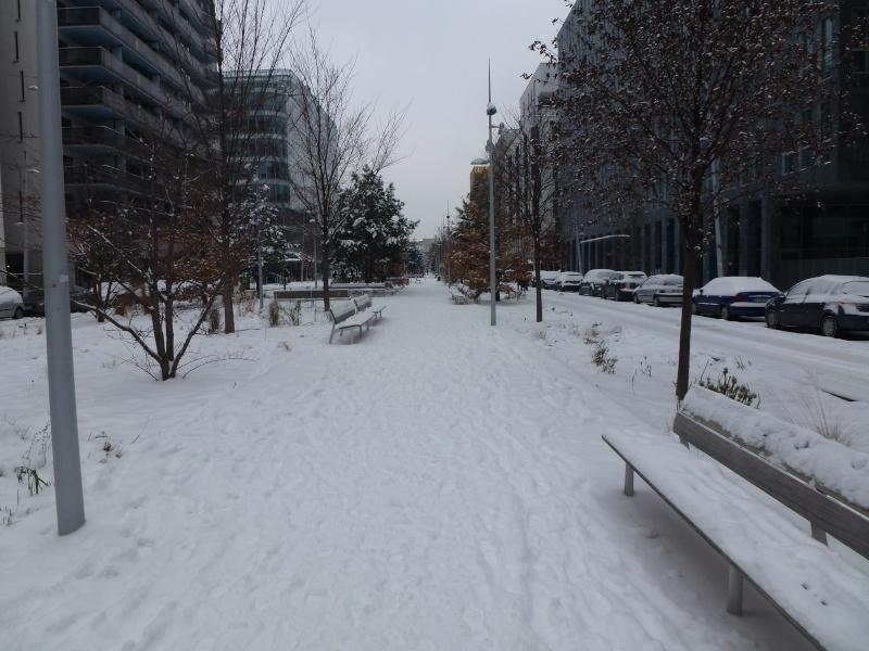 Le quartier sous la neige P1020212