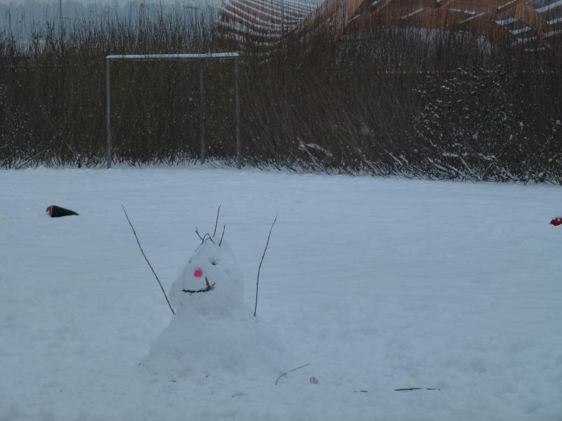 Le quartier sous la neige P1020217