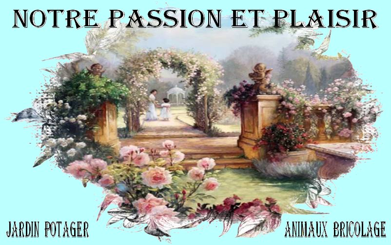 passion plaisir