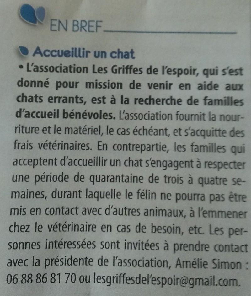 Devenir Famille d'Accueil Laviea10