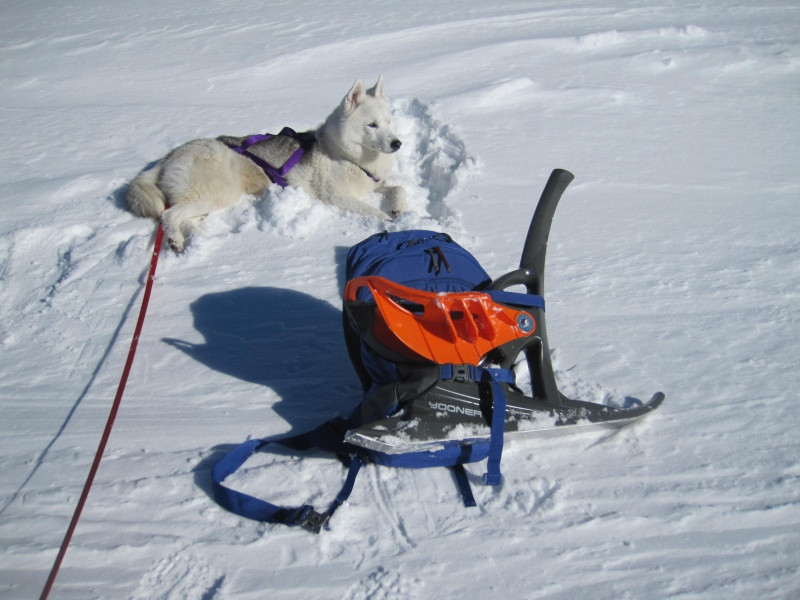 Nouvelles courses de Saskia dans la neige - Page 2 1019