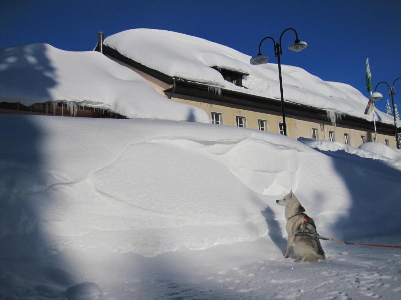 Nouvelles courses de Saskia dans la neige 110