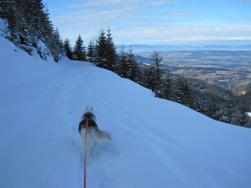 Nouvelles courses de Saskia dans la neige - Page 2 1114