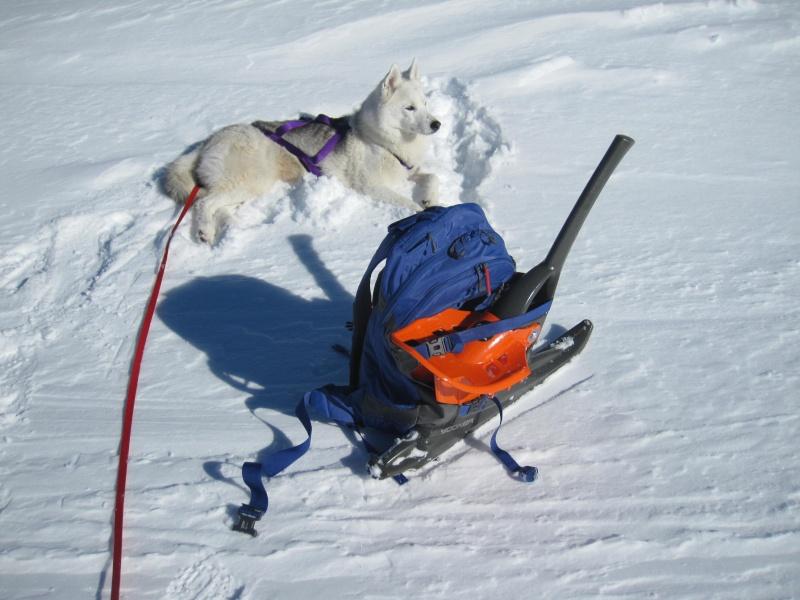 Nouvelles courses de Saskia dans la neige - Page 2 1119