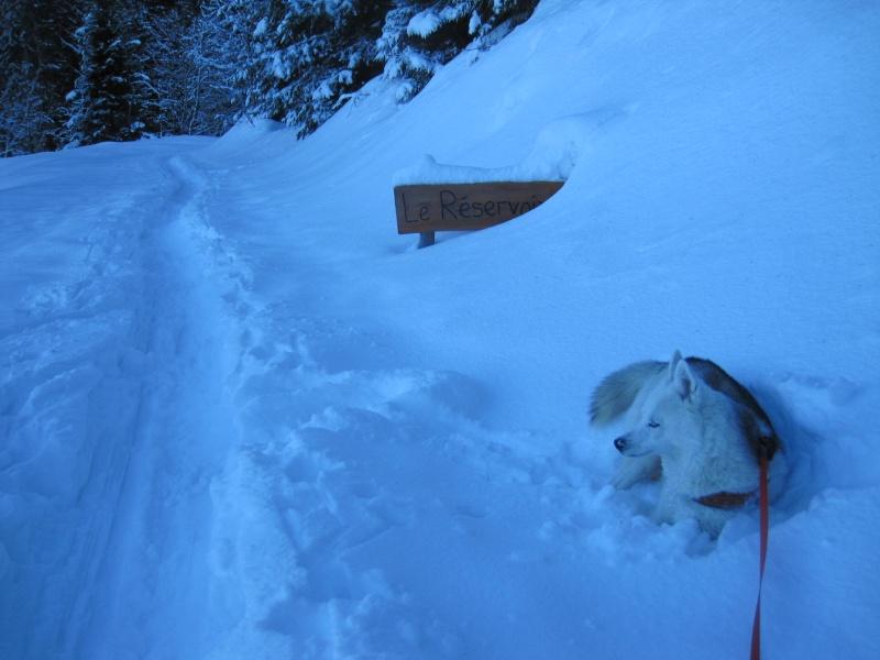 Nouvelles courses de Saskia dans la neige - Page 2 112