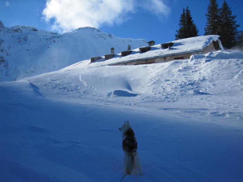 Nouvelles courses de Saskia dans la neige - Page 2 121