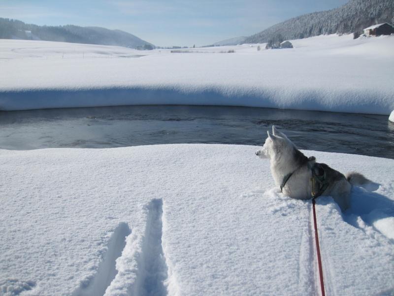 Nouvelles courses de Saskia dans la neige 1410