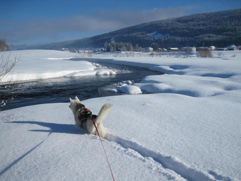 Nouvelles courses de Saskia dans la neige 1510