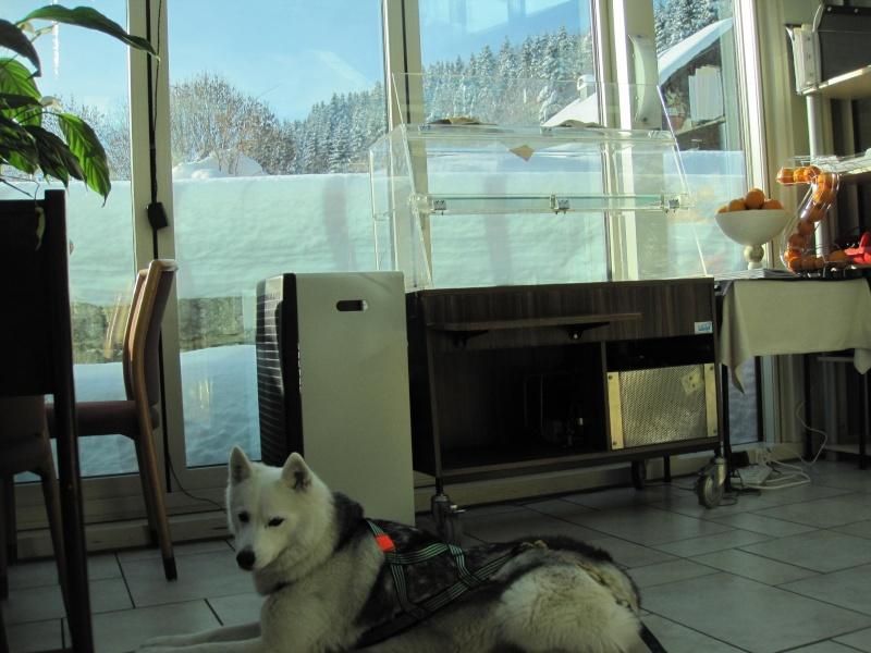 Nouvelles courses de Saskia dans la neige 2011