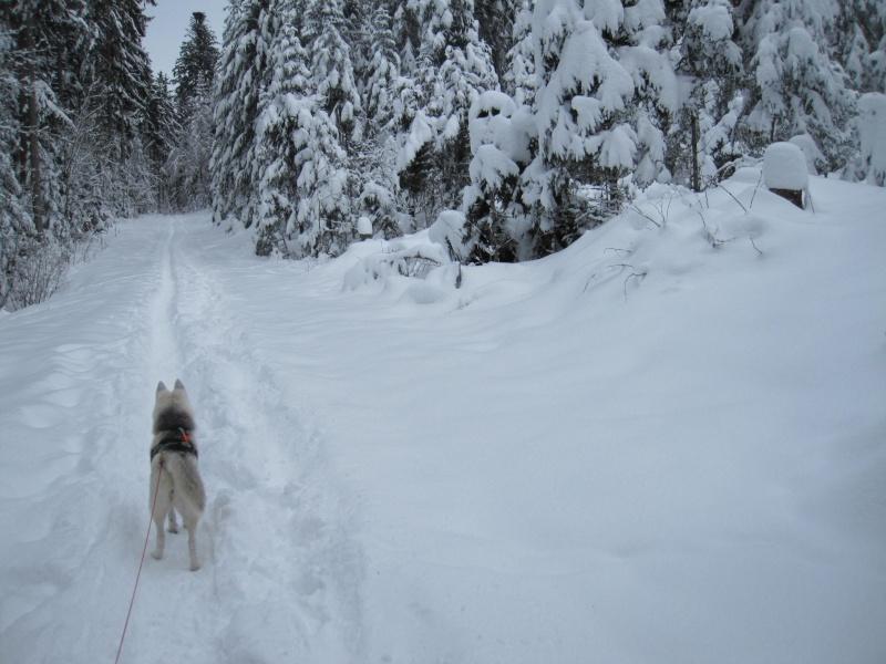 Nouvelles courses de Saskia dans la neige 2111