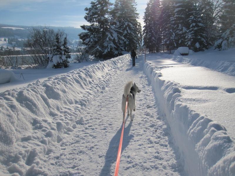 Nouvelles courses de Saskia dans la neige 2210