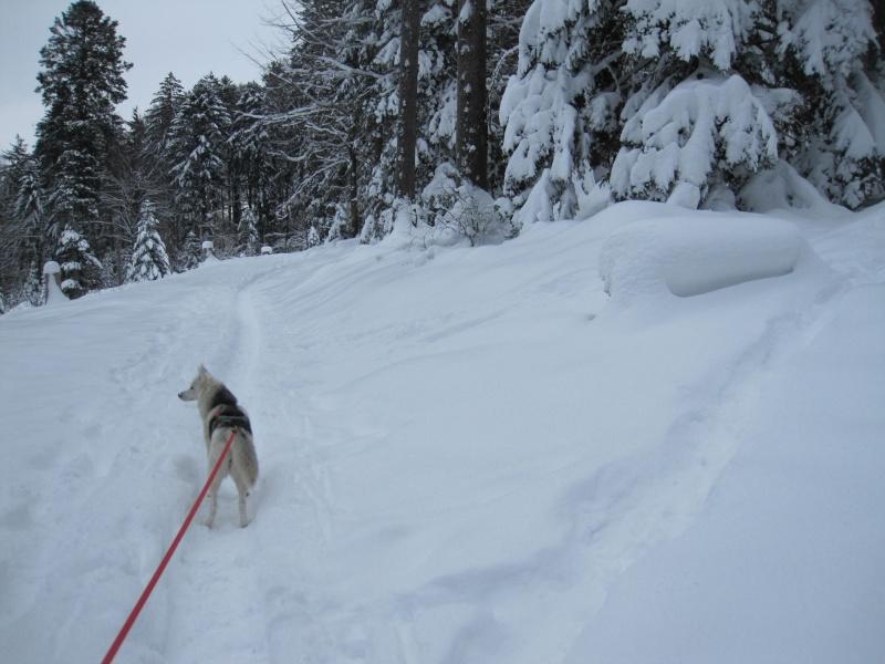 Nouvelles courses de Saskia dans la neige 2211
