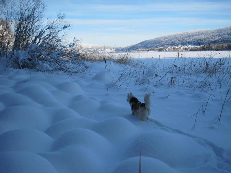 Nouvelles courses de Saskia dans la neige 2311