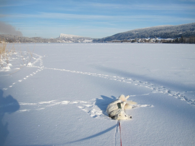 Nouvelles courses de Saskia dans la neige 2510