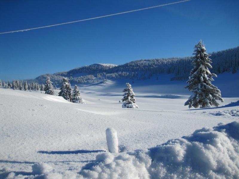 Nouvelles courses de Saskia dans la neige 267_a210