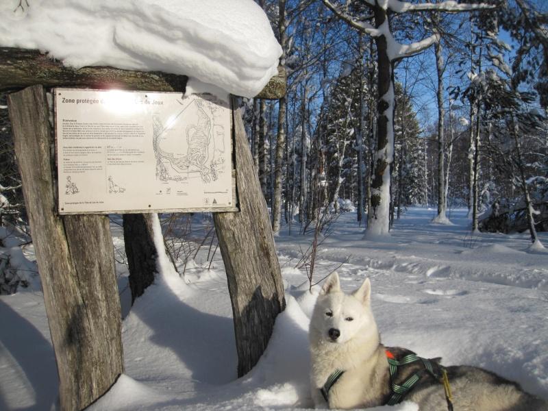 Nouvelles courses de Saskia dans la neige 2810