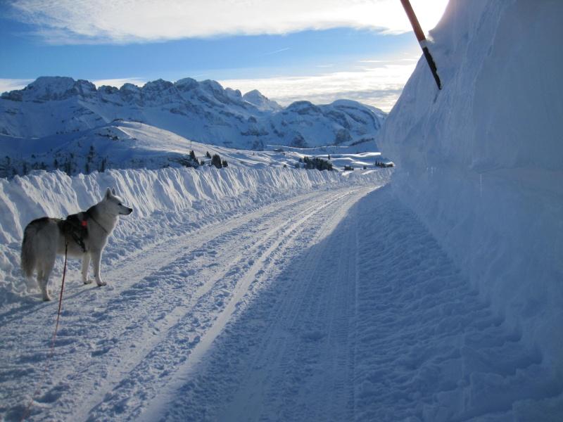 Nouvelles courses de Saskia dans la neige - Page 2 2811