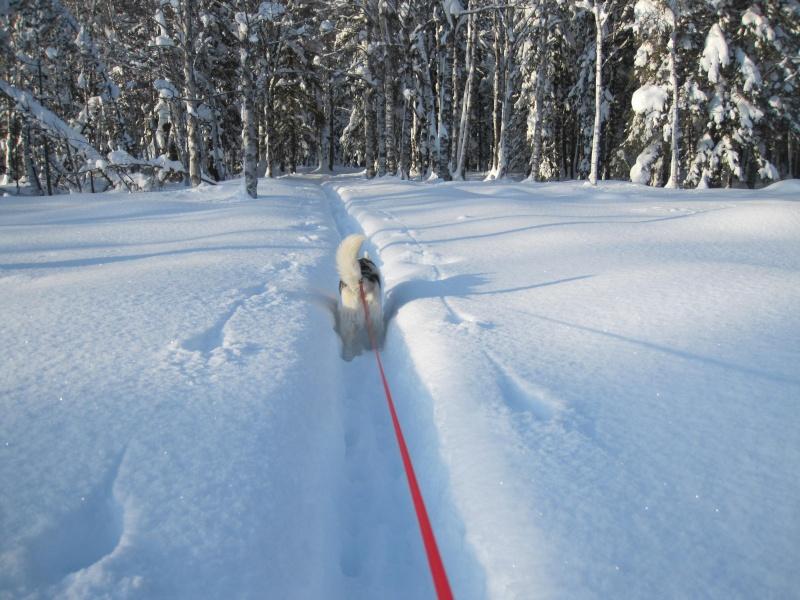 Nouvelles courses de Saskia dans la neige 2910
