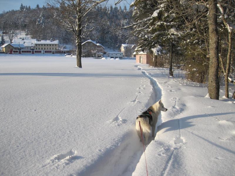 Nouvelles courses de Saskia dans la neige 3010