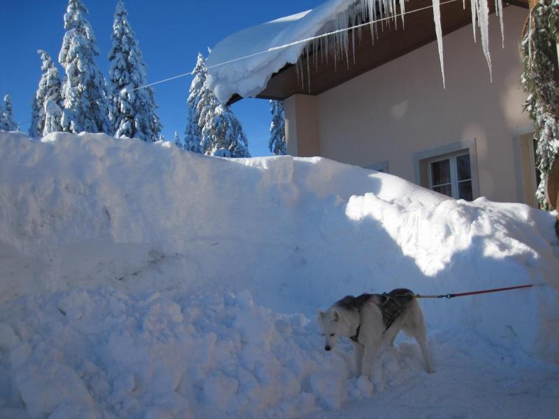 Nouvelles courses de Saskia dans la neige 310