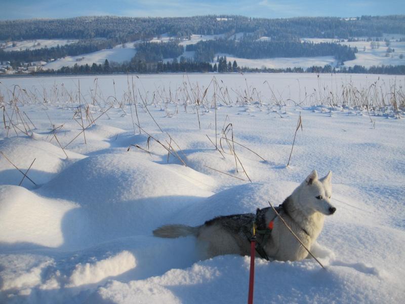 Nouvelles courses de Saskia dans la neige 3210