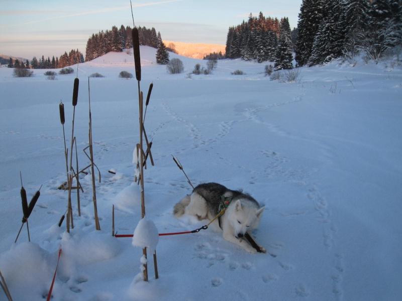 Nouvelles courses de Saskia dans la neige 4110