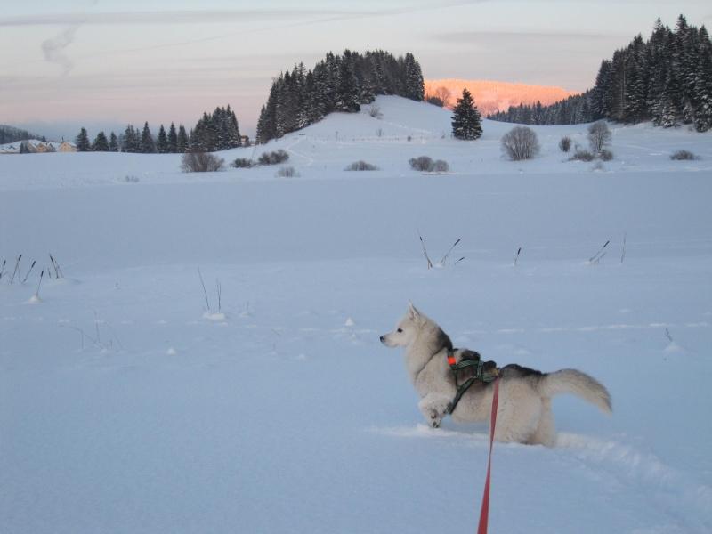 Nouvelles courses de Saskia dans la neige 4410