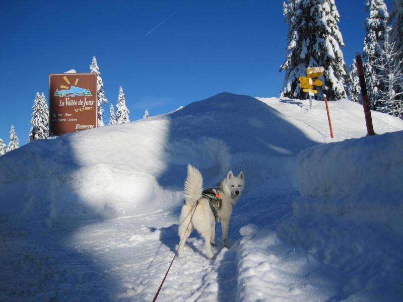Nouvelles courses de Saskia dans la neige 510