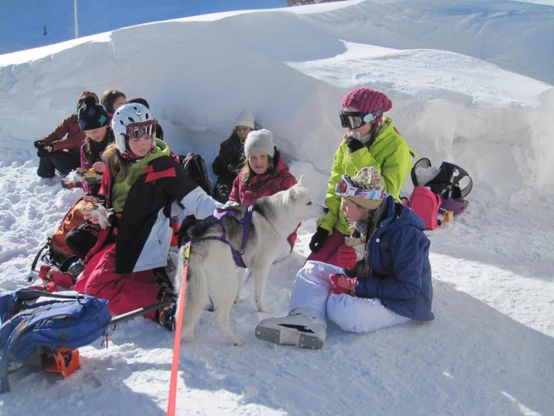 Nouvelles courses de Saskia dans la neige - Page 2 520
