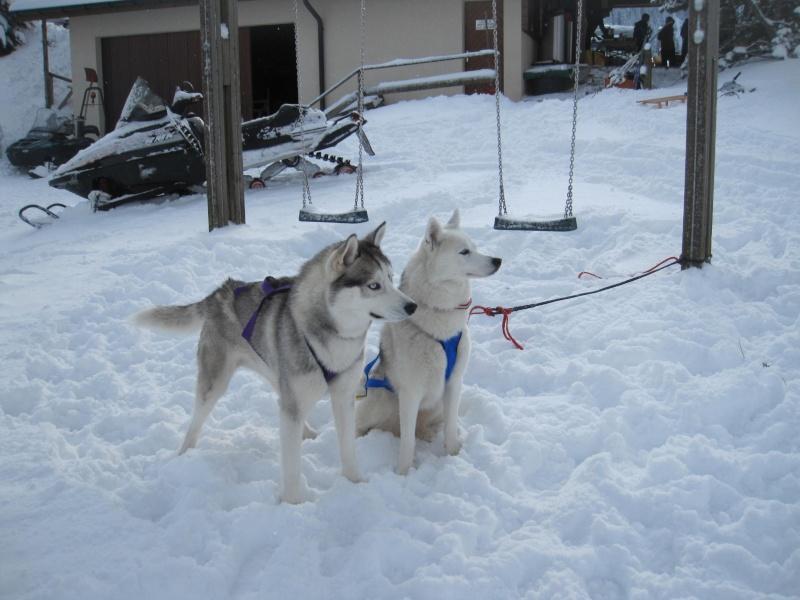 Saskia et Jiro 524