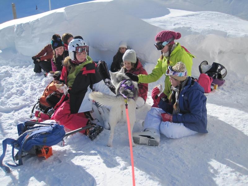 Nouvelles courses de Saskia dans la neige - Page 2 621