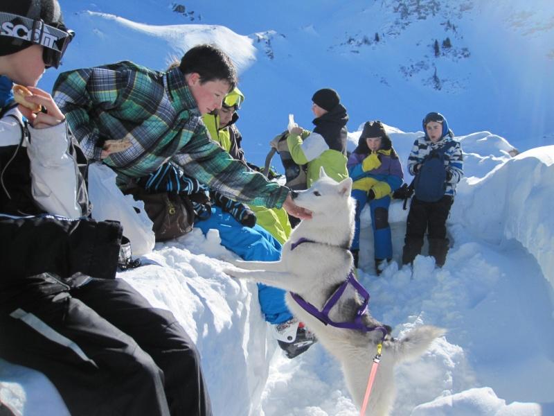 Nouvelles courses de Saskia dans la neige - Page 2 720