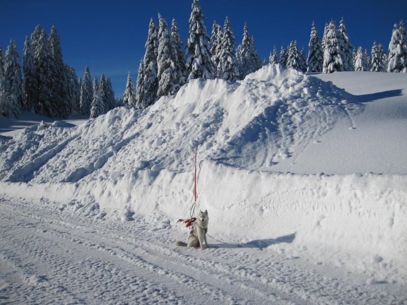 Nouvelles courses de Saskia dans la neige 810