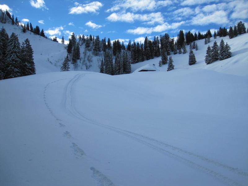 Nouvelles courses de Saskia dans la neige - Page 2 912