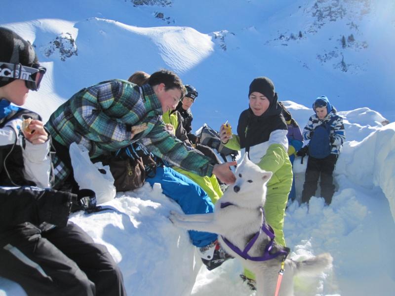 Nouvelles courses de Saskia dans la neige - Page 2 919