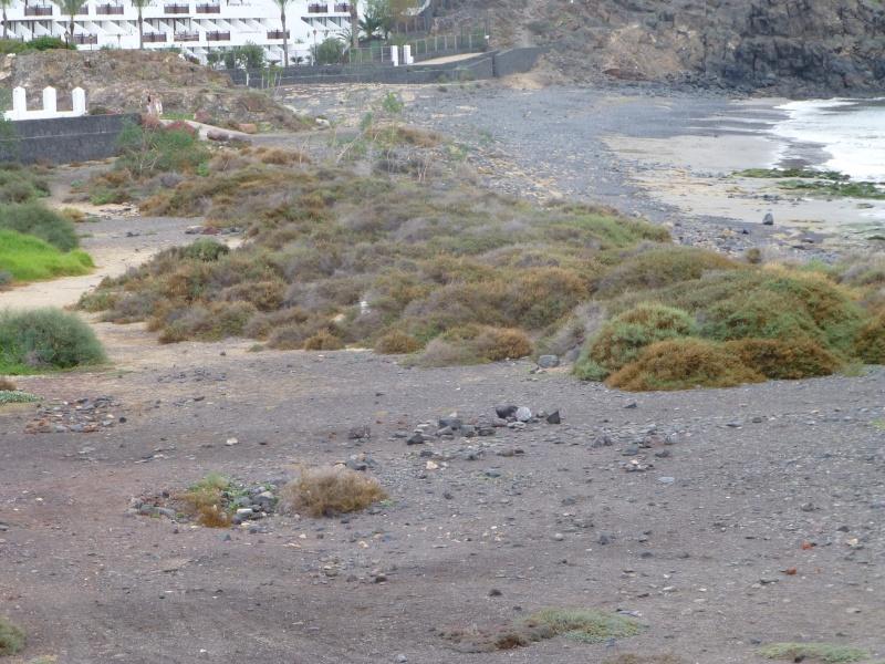 Canary Islands, Lanzarote, Playa Blanca, 2012, Walk from Papagaya to the Rubicon Marina 41510