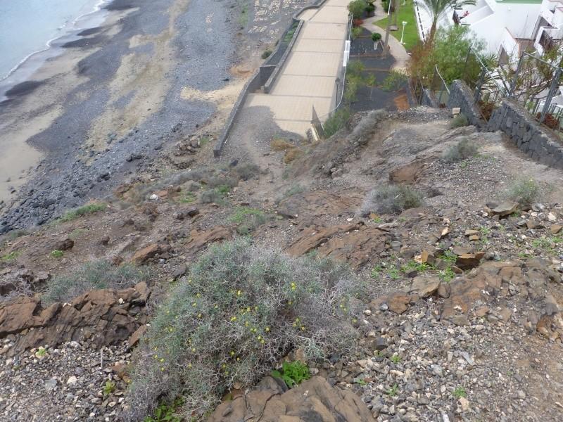 Canary Islands, Lanzarote, Playa Blanca, 2012, Walk from Papagaya to the Rubicon Marina 41710