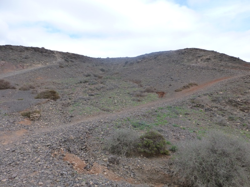 Canary Islands, Lanzarote, Playa Blanca, 2012, Walk from Papagaya to the Rubicon Marina 43810