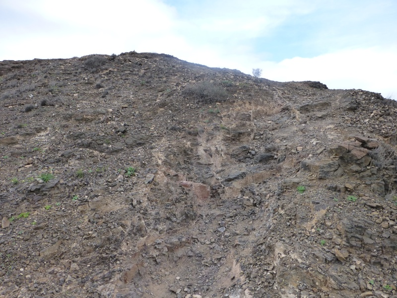 Canary Islands, Lanzarote, Playa Blanca, 2012, Walk from Papagaya to the Rubicon Marina 43910