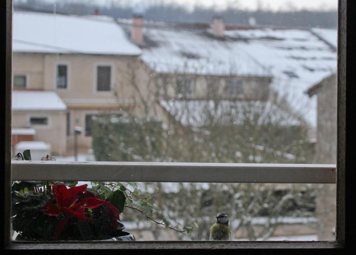 A ma fenêtre Masang10