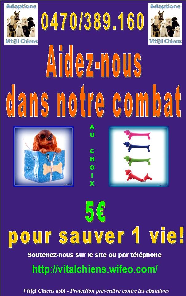 POUR AIDEZ , L ASSOCIATION VITAL CHIENS ASBL  Affich14