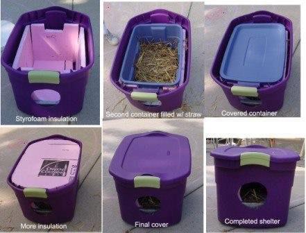 Créer un abri contre l'hiver pour les chats errants 54276910