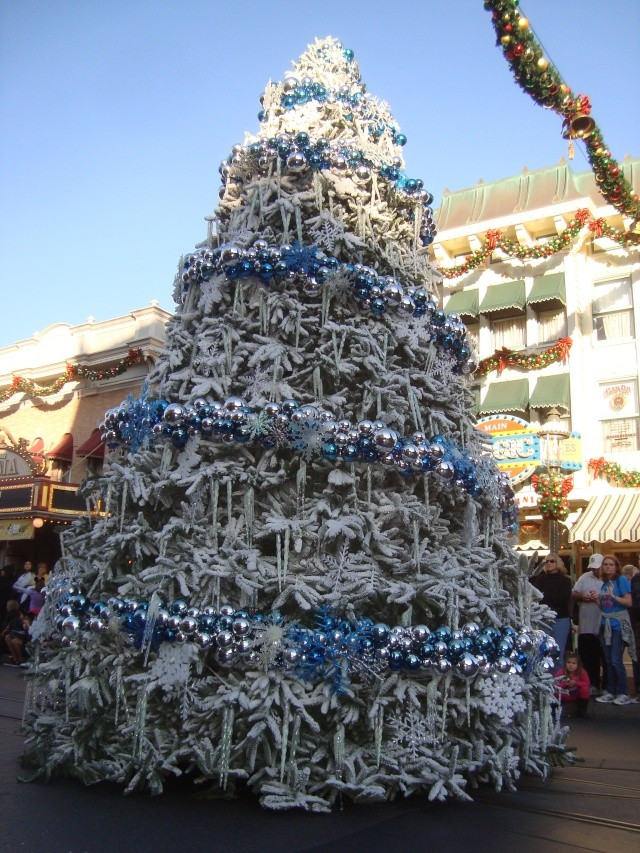 Vos plus belles photos de Disneyland Resort - Page 2 Dsc00216