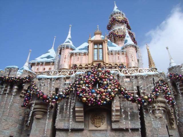 Vos plus belles photos de Disneyland Resort - Page 2 Dsc00218