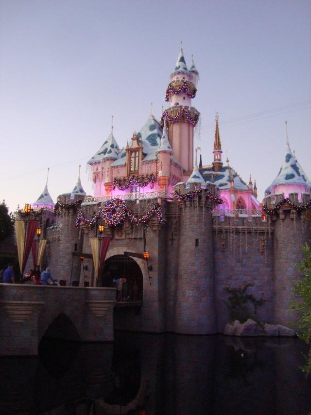 Vos plus belles photos de Disneyland Resort - Page 2 Dsc00317