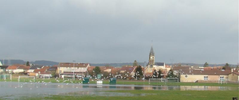 La Moselle profonde Dsc07916